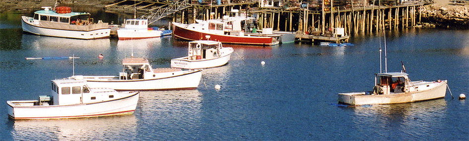 Frenchboro Harbor, Maine